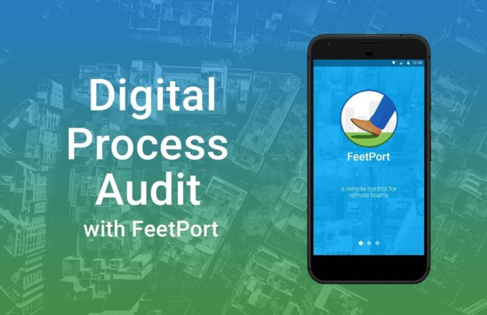 V3_Digitial-Audit-process-min-min